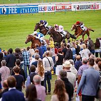 Polydream (M. Guyon) wins Prix de Lisieux in Deauville, France, 30/07/2017 photo: Zuzanna Lupa/Racingfotos.com