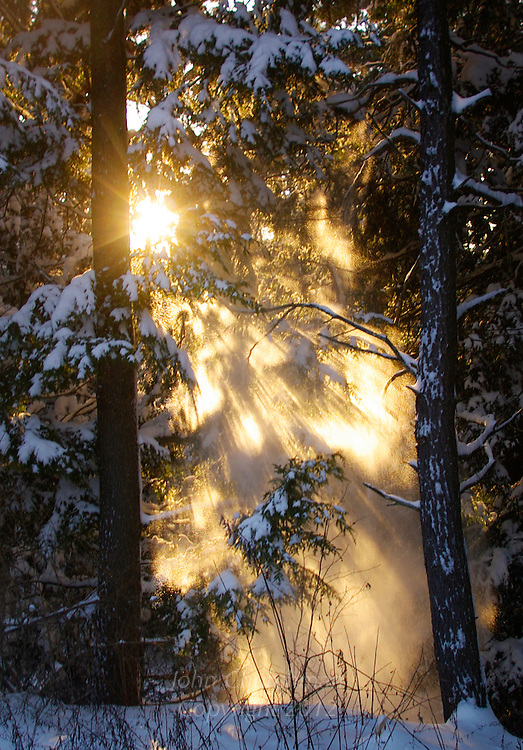 sunset through falling snow
