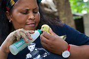 Haika Mshomi feeding one of the new ducklings.<br /> <br /> Haika set up and now runs a poultry business selling chickens, their eggs and also ducks, Mail Mojo Soweto, Tanzania.<br /> <br /> She attended MKUBWA enterprise training run by the Tanzania Gatsby Trust in partnership with The Cherie Blair Foundation for Women.