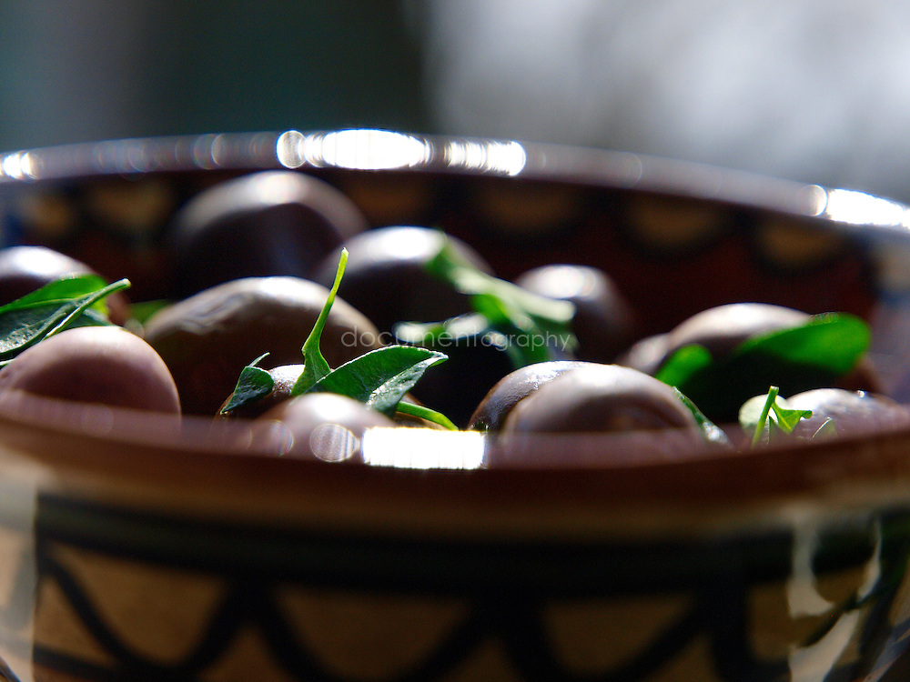Olives and ... at the house Palestinian singer Reem Kelani in London.