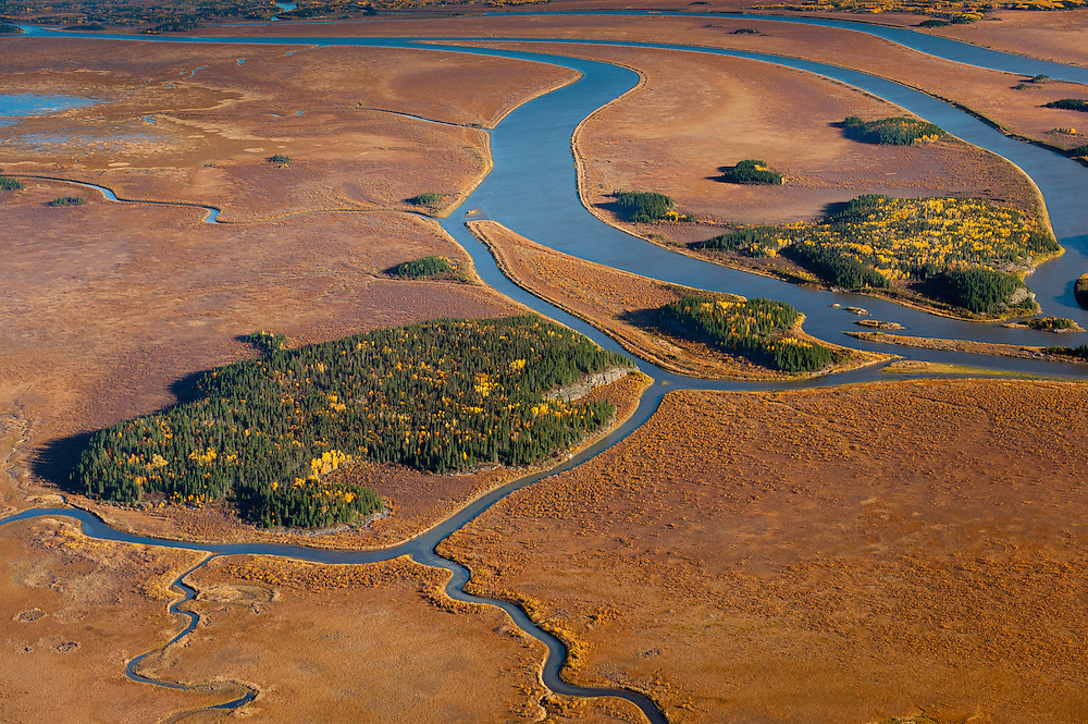 Wetlands and boreal forest in the Peace Athabasca Delta in Northern Alberta. This is the world's largest freshwater delta and is directly downstream from the alberta tar/oil sands.