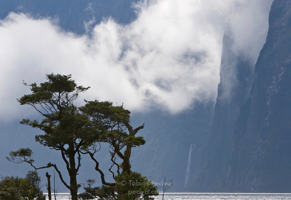 Clouds wrapping around sheer cliffs in Milford Sound, Fiordland, New Zealand.
