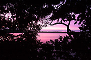 Little Sea natural freshwater lake on the Studland peninsula. Dorset, UK.