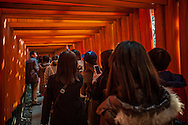 "Pedestrian traffic jam of mostly Chinese tourists shuffles into a tunnel of ""senbon torii"" or thousands of vermillion torii gates at Fushimi Inari Taisha Shinto Shrine.  Kyoto, Japan."