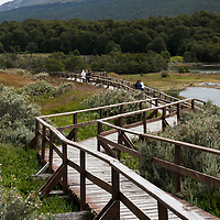 A wooden walkway leads to a dock on the Beagle Channel in Parque Nacional Tierra del Fuego, near Ushuaia, Argentina.