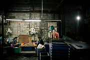 Saphan Pla fish market in Bangkok, some Burmese migrant are working illegally. Saphan Pla, marché aux poissons à Bangkok, des migrants birmans travaillent illégalement.