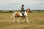 Class 22 - Novice Ridden Horse & Pony