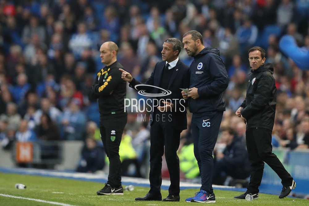 Brighton Manager, Chris Hughton Brighton Assistant Manager, Colin Calderwood during the EFL Sky Bet Championship match between Brighton and Hove Albion and Norwich City at the American Express Community Stadium, Brighton and Hove, England on 29 October 2016.