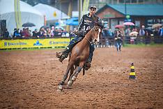 Provas do Cavalo Árabe