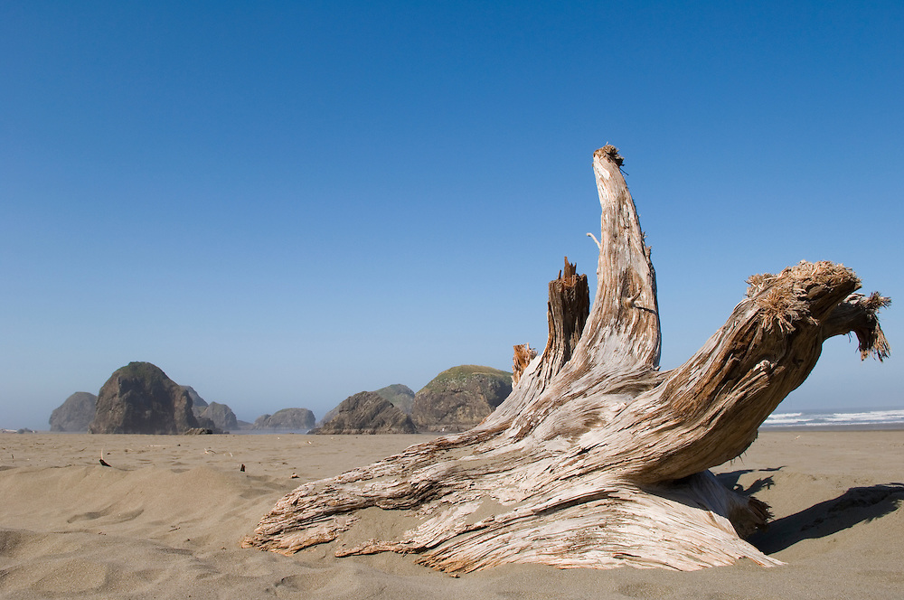 Driftwood log and sea stacks on beach at Myers Creek area of Pistol River State Park, Samuel H. Boardman State Scenic Corridor, Oregon Coast.