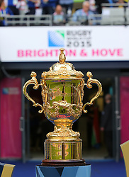 A General view of the Webb Ellis Cup