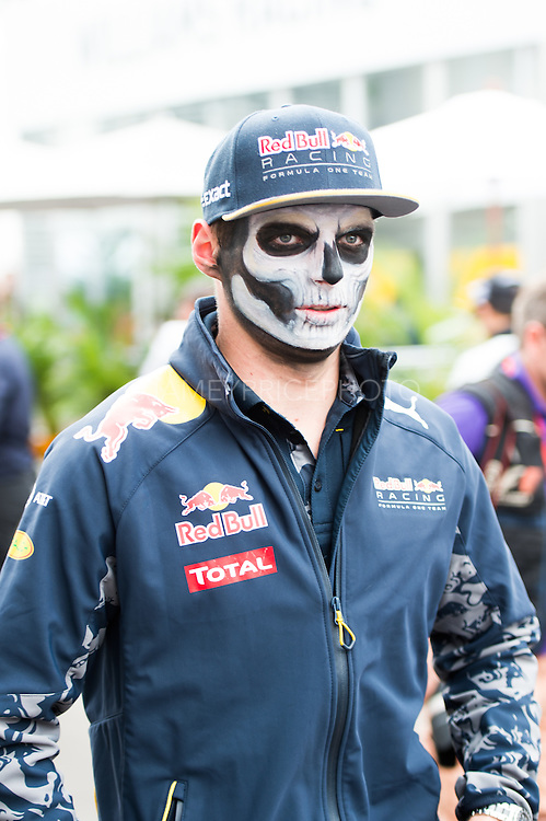October 27, 2016: Mexican Grand Prix. Max Verstappen, Red Bull