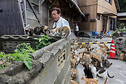Aoshima, Ehime prefecture, September 4 2015 - After the arrival of the boat in Aoshima, the boat captain brings some food for the cats.<br /> Aoshima (Ao island) is one of the several « cat islands » in Japan. Due to the decreasing of its poluation, the island now host about 6 times more cats than residents.