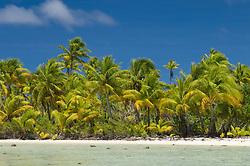 , French Polynesia - 10/27/2006 - Fakarawa, Tuamotu Archipelago, French Polynesia.(Photo by Sharpshooters/VWPics) *** Please Use Credit from Credit Field *** *** Please Use Credit from Credit Field ***