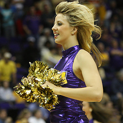 14 February 2009: A LSU Tiger Girl dancer performs during a 73-66 win by the LSU Tigers against SEC rival the Ole Miss Rebels at the Pete Maravich Assembly Center in Baton Rouge, LA.