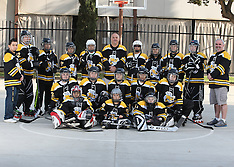 Stingers Winter 2014 Team and Individuals
