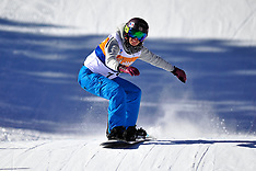 2014 IPC Snowboarder Cross World Cup, La Molina, Spain