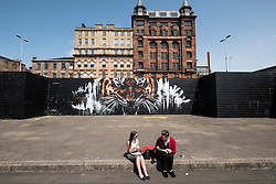 Tiger street art Mural on wall in central Glasgow, Scotland , United Kingdom