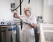 Lab technicians work at Cryos International, a sperm bank in Aarhus, Denmark<br /> Cryos International is located on the fifth floor of a small building in Aarhus, Denmark. It looks like any other office, but inside, it's among the world's largest sperm banks.<br />Cryos International has sent vials of sperm to more than 80 countries, and more than 27,000 babies have been born from its donors. Donors are paid from $15 to $76 per &quot;donation,&quot; and the vials can sell from $45 to $1,137, depending on potency and donor profiles