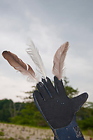 New York, Long Island - sculpture close-up showing a glove with feathers on the tips of 3 fingers.