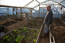 London, UK. 26th February, 2019. Terry observes a polytunnel at Grow Heathrow, a squatted eco-community founded in 2010 on a previously derelict site close to Heathrow airport in protest against government plans for a third runway which was today partially evicted by bailiffs. The community has developed an extensive garden and is acknowledged to have made a significant educational and spiritual contribution to life in the Heathrow villages which are threatened by airport expansion. Bailiffs today evicted most of the front section of the site, owned by Imran Malik, removing several protesters locked on in towers above the camp, but four protesters are believed to remain in a tunnel beneath that area. Many more protesters remain on the rear portion of the site. Five legal challenges to the government's approval of a 3rd runway at Heathrow will proceed to judicial review at the Royal Courts of Justice on 10th March.