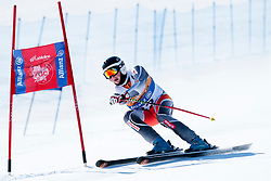 ANDREASSEN Mads, NOR, Giant Slalom, 2013 IPC Alpine Skiing World Championships, La Molina, Spain