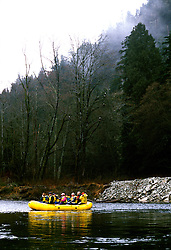 Canada, British Columbia.  Rafting through bald eagles at Brackendale.  Photo #: caneag101..Photo copyright Lee Foster, 510/549-2202, lee@fostertravel.com, www.fostertravel.com