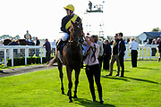 Delagate This Lord ridden by Seamus Cronin and trained by Michael Attwater in the Best Free Tips At Valuerater.Co.Uk Summer Sprint Series Final Handicap race.  - Ryan Hiscott/JMP - 15/09/2019 - PR - Bath Racecourse - Bath, England - Race Meeting at Bath Racecourse