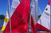 AT5CG8 Sails of sailing dinghy boats River Deben Woodbridge Suffolk