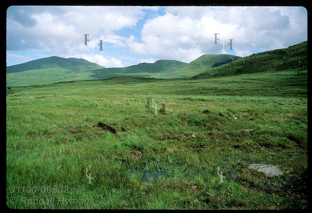 Treeless landscape of green meadows carpets hills and dales on way up to Conor Pass; Dingle. Ireland