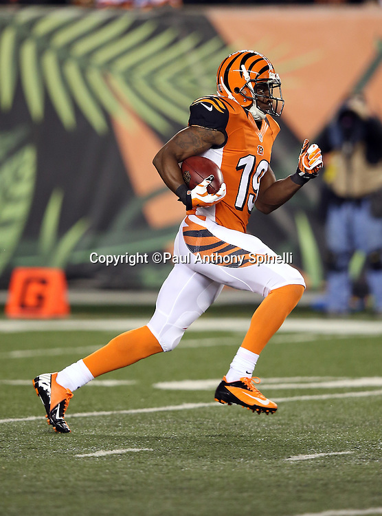 Cincinnati Bengals wide receiver Brandon Tate (19) returns a second quarter kickoff during the 2015 week 10 regular season NFL football game against the Houston Texans on Monday, Nov. 16, 2015 in Cincinnati. The Texans won the game 10-6. (©Paul Anthony Spinelli)