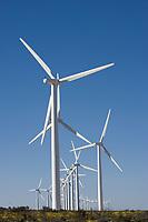 Electric Windfarms, near McCamey, Texas