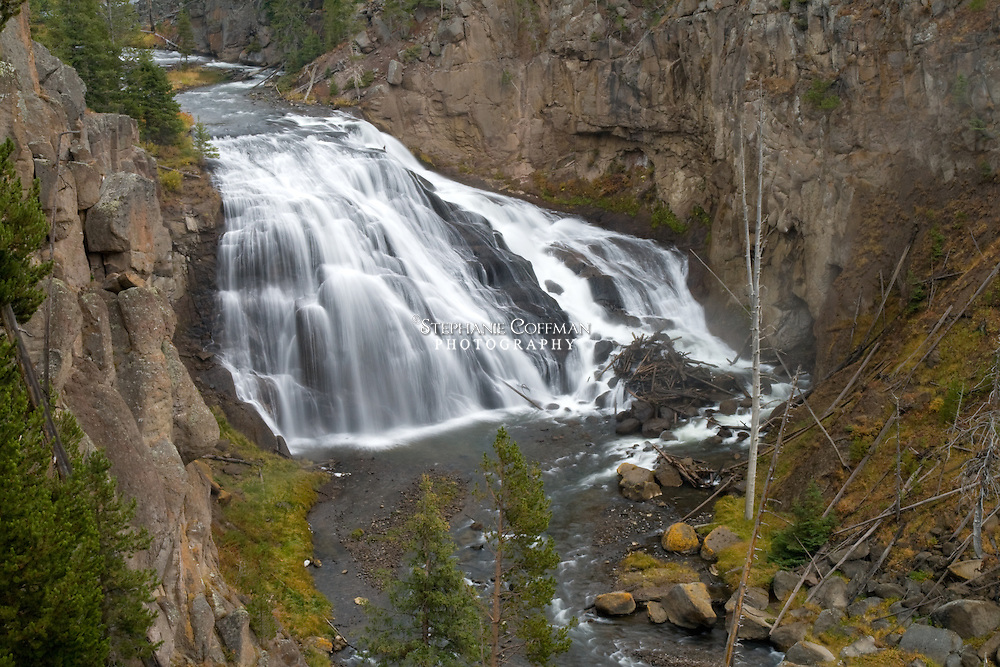 First described by William Henry Jackson in 1872, Gibbon Falls drops 84 feet along the Gibbon River in Yellowstone National Park