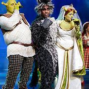 NLD/Amsterdam/20121104 - Premiere Shrek de musical, Kim Lian van der Meij, Rogier Komproe en William Spaaij