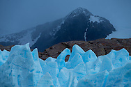 South America,Patagonia, Chile, Torres del Paine, Lago Grey, UNESCO, World Heritage, Grey glacier ice