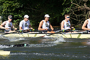 Henley on Thames, England, United Kingdom, 3rd July 2019, Henley Royal Regatta, Heat of the Temple Challenge Trophy, Brown University, USA, move away from the start,  on Henley Reach, [© Peter SPURRIER/Intersport Image]<br /> <br /> 09:34:40 1919 - 2019, Royal Henley Peace Regatta Centenary,