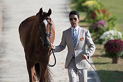 Alex Hua Tian, CHN, Don Geniro<br /> Olympic Games Rio 2016<br /> © Hippo Foto - Dirk Caremans<br /> 05/08/16