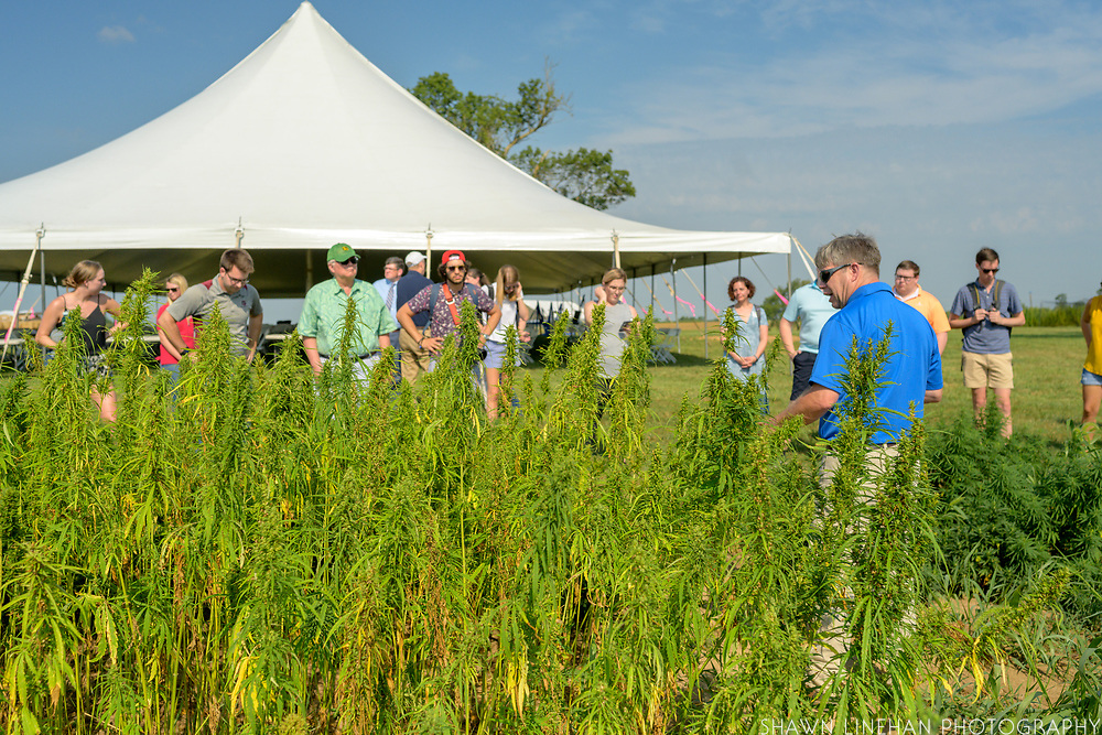 NASDA Farm Tour of the University of Kentucky hemp fields
