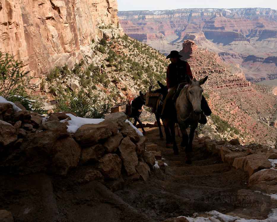 Photo by Gary Cosby Jr.  ..Bright Angel Trail is one of the most popular in Grand Canyon.  The trail descends from either rim of the Canyon and goes all the way to the Colorado River.  The trail is traversed by mule trains, hikers and even an occasional runner.