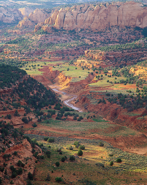 0111-1050 ~ Copyright: George H. H. Huey ~ Tsegi Canyon, after summer rains. Navajo National Monument, Arizona.