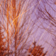 Blowing snow is captured with a highlight on the motion and an abstraction of the known process.