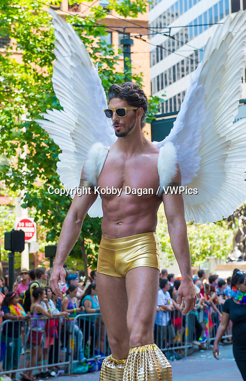 participant at the annual San Francisco Gay pride parade