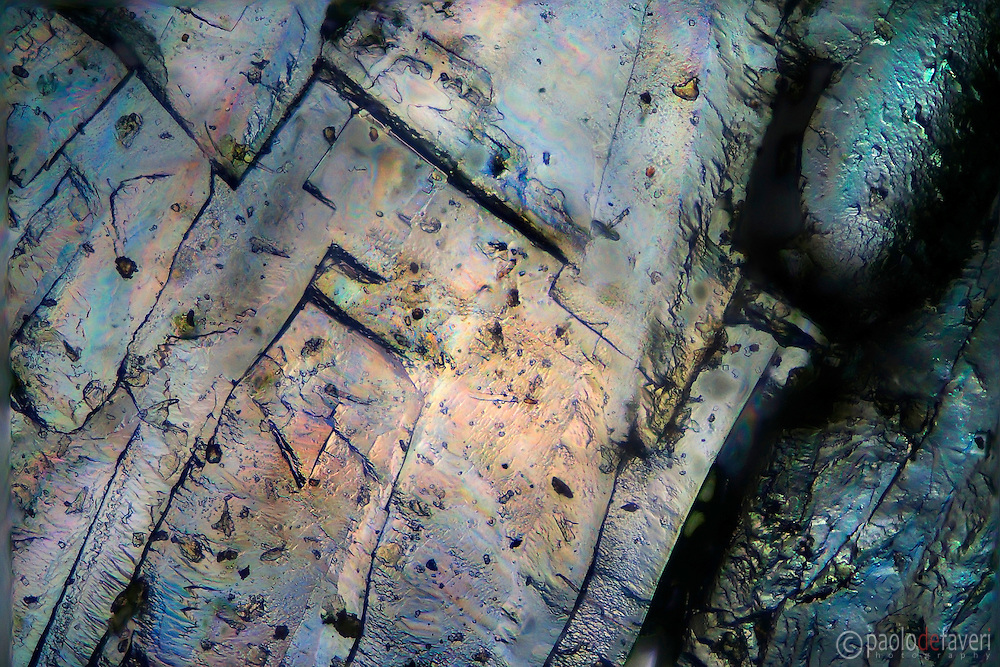 Salt crystals on glass, viewed at the microscope in polarized light