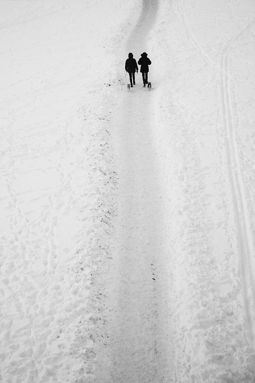 A couple and their dogs walk a path in the snow.