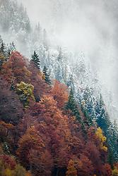 THEMENBILD - herbstlich gefärbte Bäume und mit schnee bedeckte Bäume, aufgenommen am 17. Oktober 2015, Ferleiten, Österreich // autumn colored trees and with snow covered trees, Ferleiten, Austria on  2015/10/17. EXPA Pictures © 2015, PhotoCredit: EXPA/ JFK