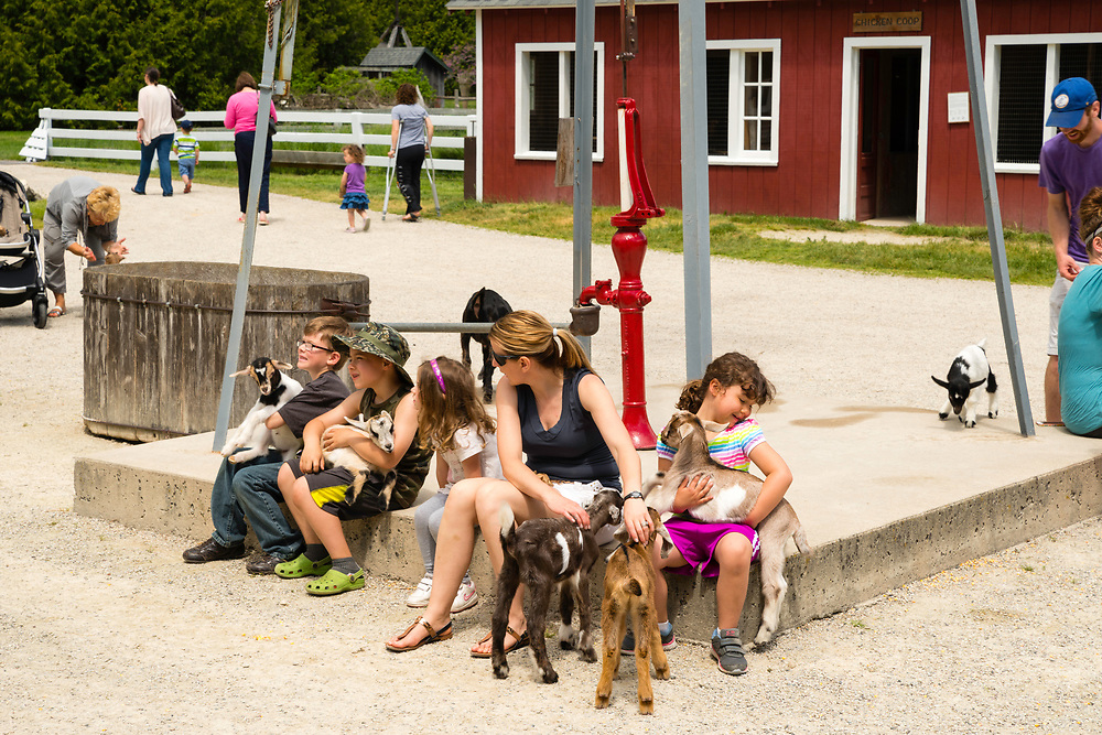 Children hold goat kids at The Farm, Door County, Wisconsin, USA