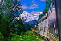 The Alaska Railroad running between Talkeetna and Denali National Park, with Mt. McKinley in the background, Alaska