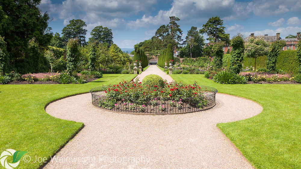 Roses and pelargoniums bring colour to a circular flower bed at Erddig Hall, Wrexham, North Wales.  The bed punctuates a long walk down the south side of the gardens.  Photographed in July.