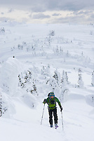 Backcountry telemark skier skinning up to the summit of Brothers Mountain, Manning Provincial Park British Columbia Canada