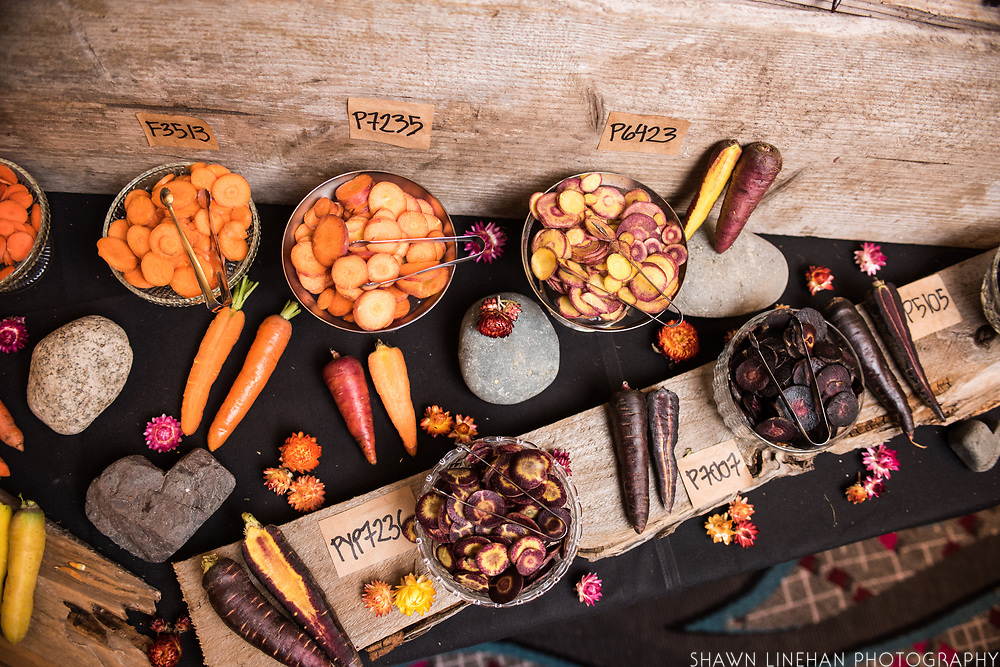 CARROT, Daucus carota<br />Showcase: PR5110 breeding line<br />Breeders: Phil Simon, USDA-ARS and Organic Seed Alliance<br />Chef: Maya Lovelace, Mae<br />Dish: Raw carrots with black garlic, coffee mayonnaise, sorghum molasses and brown butter